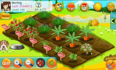 Kostenloses Android-Game Papaya Farm. Vollversion der Android-apk-App Hirschjäger: Die Papaya Farm für Tablets und Telefone.