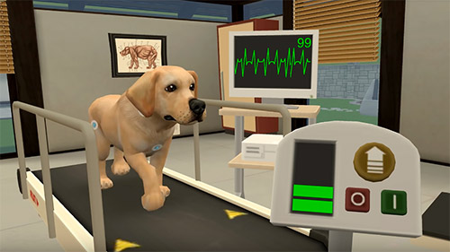 Juega a Pet world: My animal hospital. Care for animals para Android. Descarga gratuita del juego Mundo de las mascotas: Mi hospital de animales. Cuidado de los animales.