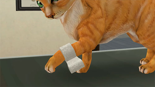Screenshots von Pet world: My animal hospital. Care for animals für Android-Tablet, Smartphone.