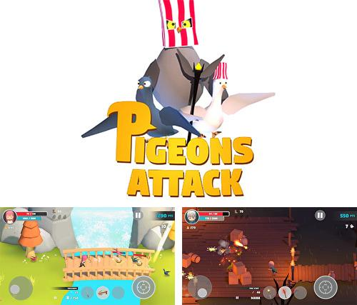 Pigeons attack