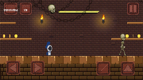 Screenshots of the Pixel knight for Android tablet, phone.