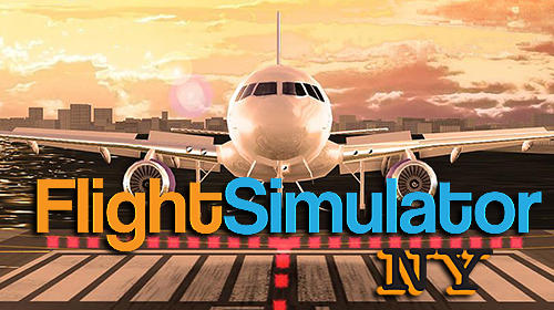 Pro flight simulator NY poster