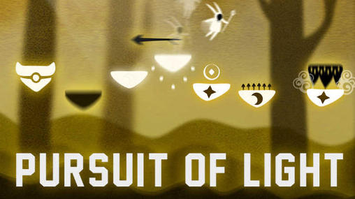 Pursuit of light poster