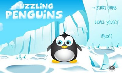 Puzzling Penguins