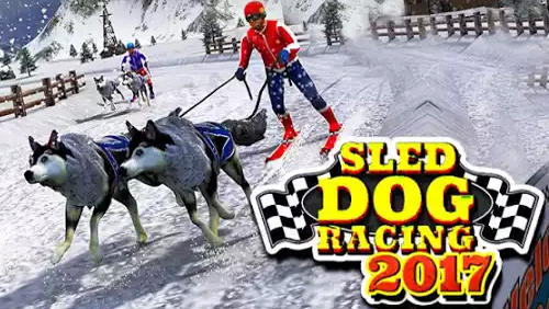 Sled dog racing 2017