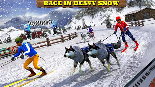 Download Sled dog racing 2017 Android free game.