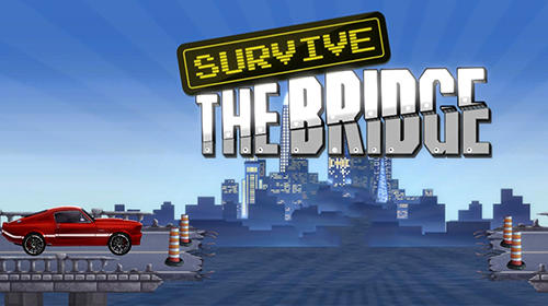 Survive the bridge poster