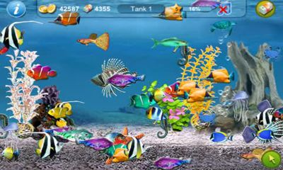 Screenshots of the Tap Fish for Android tablet, phone.