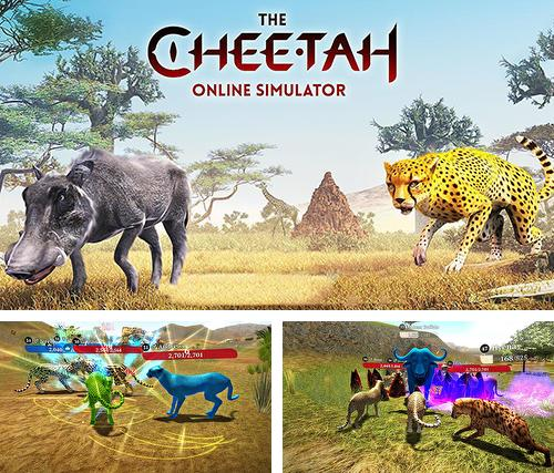 The cheetah: Online simulator
