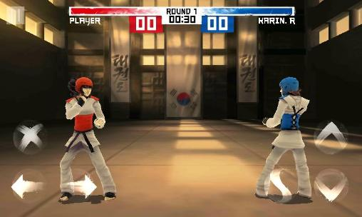 The taekwondo game: Global tournament скриншот 2