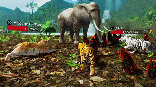 The tiger: Online simulator screenshot 2