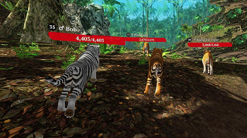 The tiger: Online simulator screenshot 4