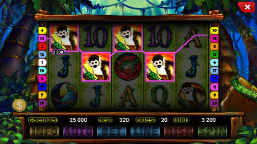The wild slot screenshot 2