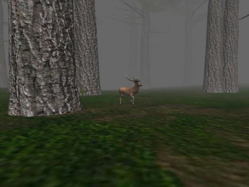 Trapped in the forest screenshot 4