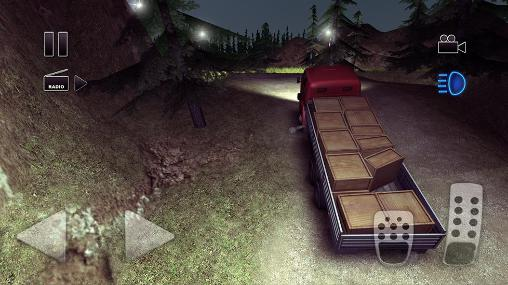 Image result for Crazy Trucker GAme Pic