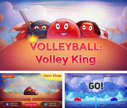 Volleyball: Volley king