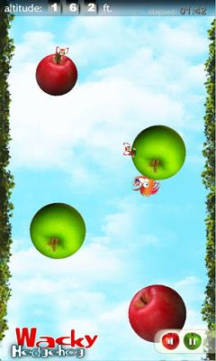 Get full version of Android apk app Wacky Hedgehog jump for tablet and phone.