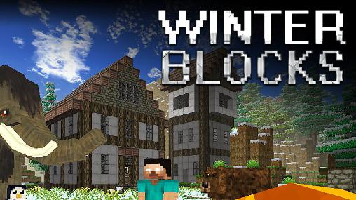 Winter blocks poster