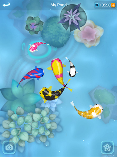Zen koi 2 screenshot 2