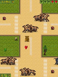 Mobile game Lion Prince: Savannah Challenge - screenshots. Gameplay Lion Prince: Savannah Challenge.
