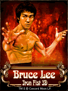 Bruce Lee Iron Fist 3D