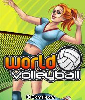 World Volleyball