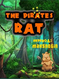 The Pirates Rat: Zhiyong Large Checkpoints