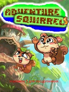 Adventure Squirrel