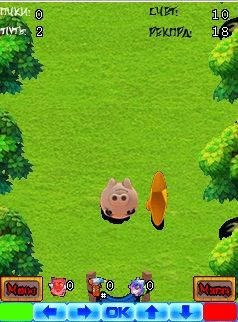 Download free game for mobile phone: Pig Shot - download mobile games for free.