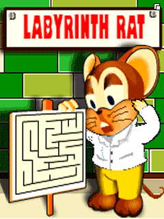 Labyrinth Rat