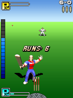 Скриншот java игры Freddie Flintoff: All-Round Cricket. Игровой процесс.
