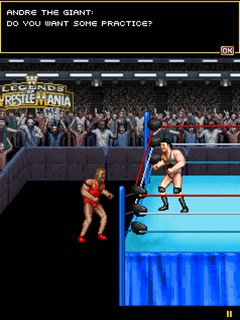 Скриншот java игры WWE Legends of WrestleMania. Игровой процесс.
