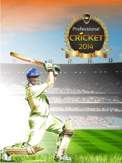 Professional cricket 2014