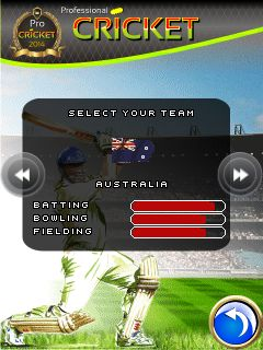 Mobil-Spiel Professioneller Cricket 2014 - Screenshots. Spielszene Professional cricket 2014.