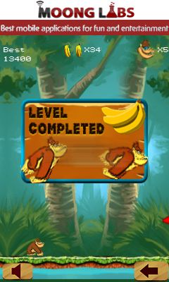 Mobile game Jungle safari adventure - screenshots. Gameplay Jungle safari adventure.