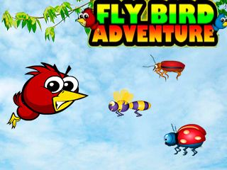 Fly bird adventure