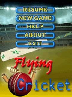 Download free mobile game: Flying: Cricket - download free games for mobile phone.
