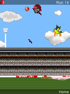Download free game for mobile phone: Flying: Cricket - download mobile games for free.
