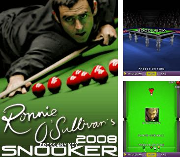 3D Ronnie OSullivans Snooker 2008