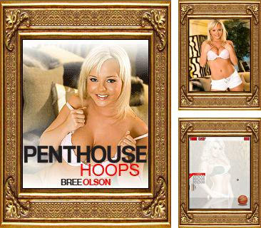 In addition to the game Terraria mobile for mobile phone, you can download mobile game Penthouse hoops: Bree Olson for free.
