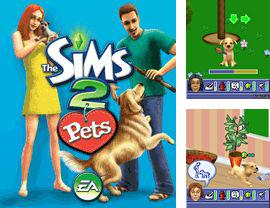 In addition to the game Tetris POP for mobile phone, you can download mobile game The Sims 2: Pets for free.