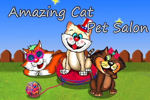 Amazing cat: Pet salon