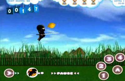 Screenshots of the Baby Ninja game for iPhone, iPad or iPod.