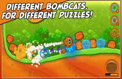 Download Bombcats Special Edition iPhone free game.