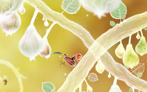 Free Botanicula download for iPhone, iPad and iPod.