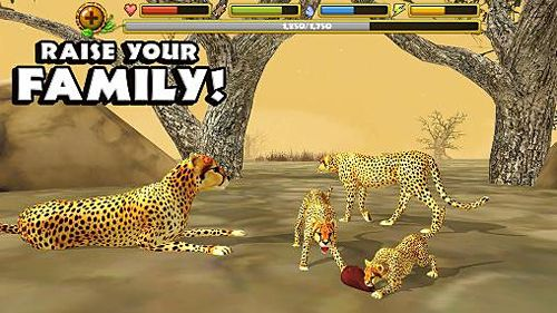 Download Cheetah simulator iPhone free game.