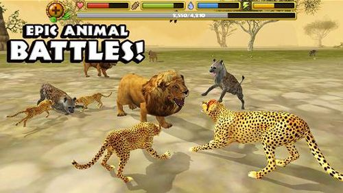 Free Cheetah simulator download for iPhone, iPad and iPod.