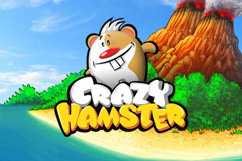 Hamster games rodent drawing hamster png download 578*600.