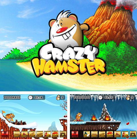 In addition to the game Woozle for iPhone, iPad or iPod, you can also download Crazy hamster for free.