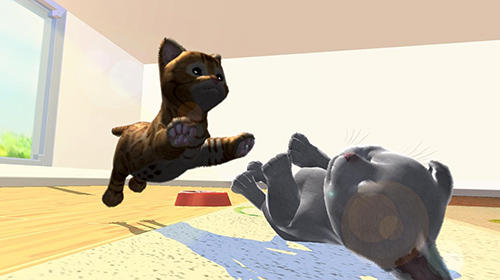 Kostenloser Download von Daily kitten: Virtual cat pet für iPhone, iPad und iPod.